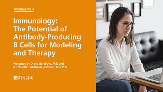 The Potential of Antibody-Producing B Cells for Modelling and Therapy