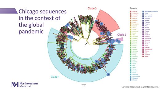 SARS-CoV-2 Viral Diversity: Causes, Consequences, and Opportunities