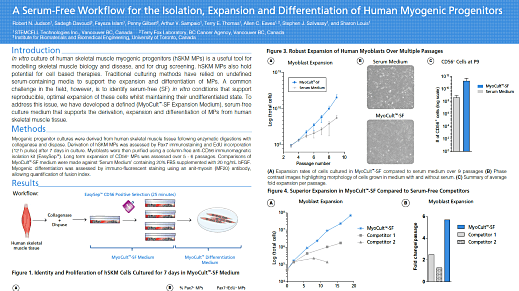 A Serum-Free Workflow for the Isolation, Expansion and Differentiation of Human Myogenic Progenitors