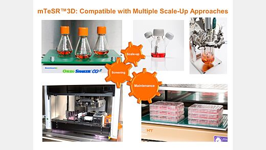 mTeSR™3D for Expansion and Scale Up of Human Pluripotent Stem Cell Cultures