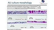 PneumaCult™-ALI: An Improved Medium Formulation for the Differentiation of Human Bronchial Epithelial Cells