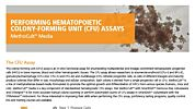 MethoCult™ Media for Performing Hematopoietic Colony-Forming Unit (CFU) Assays