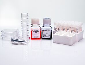 Human Cord Blood Quality Control Kit
