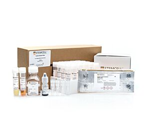 MegaCult™-C Complete Kit without Cytokines