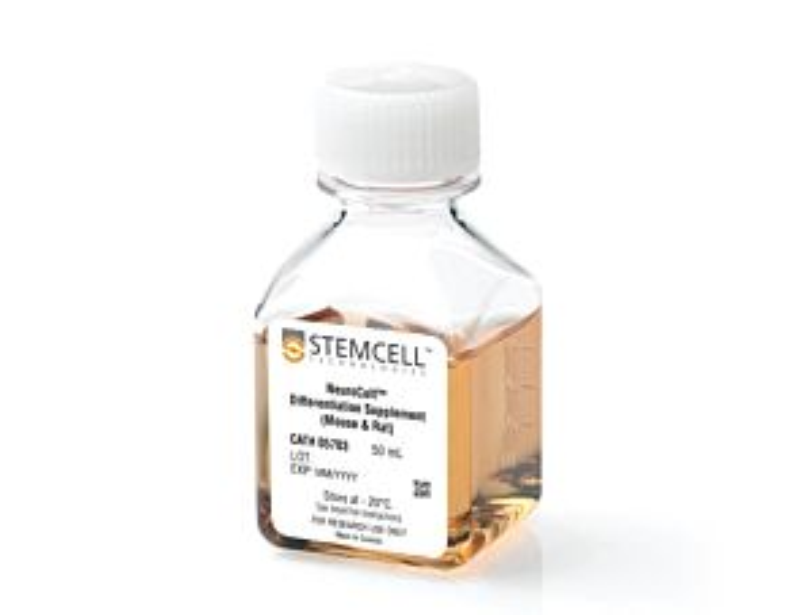 NeuroCult™ Differentiation Supplement (Mouse)