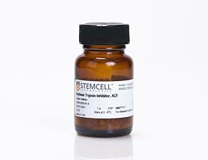 Soybean Trypsin Inhibitor, ACF|07457