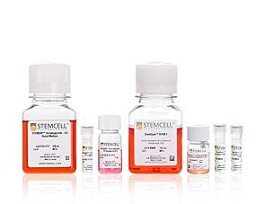 STEMdiff™ NK Cell Kit