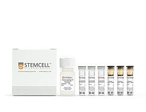EasySep™ HLA Chimerism Whole Blood CD3 Positive Selection Kit|17871