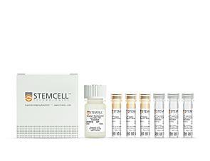 EasySep™ HLA Chimerism Whole Blood Lymphoid Positive Selection Kit|17873