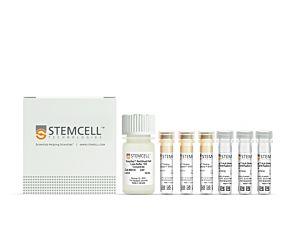 EasySep™ HLA Chimerism Whole Blood CD19 Positive Selection Kit|17874