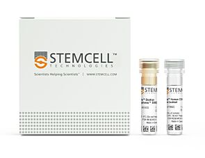 EasySep™ Human CD4+ T Cell Isolation Kit|17952