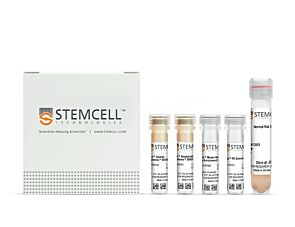 EasySep™ Mouse CD4+CD62L+ T Cell Isolation Kit|18765