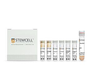 EasySep™ Mouse CD4+CD25+ Regulatory T Cell Isolation Kit II|18783