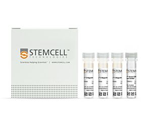 EasySep™ Human CD8+ T Cell Enrichment Kit|19053