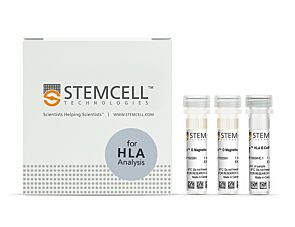 EasySep™ HLA B Cell Enrichment Kit|19054HLA