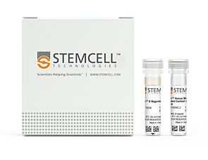 EasySep™ Human Monocyte Enrichment Kit without CD16 Depletion|19058