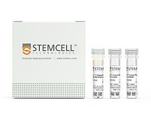 EasySep™ Human Monocyte Isolation Kit|19359