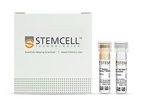 EasySep™ Rat CD4+ T Cell Isolation Kit|19642