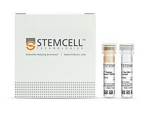 EasySep™ Rat CD8+ T Cell Isolation Kit|19643