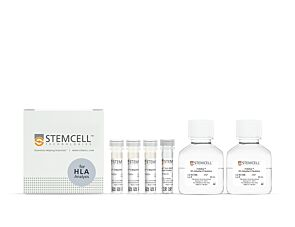 EasySep™ HLA Whole Blood T Cell Enrichment Kit|19951HLA