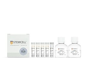 EasySep™ HLA B Cell Enrichment: Complete Processing Kit for Whole Blood|19954HLA