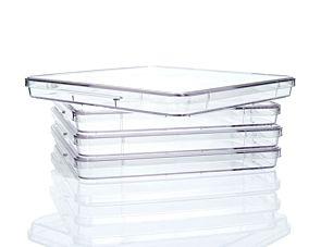 Corning® 245 mm Square Dish, Non-Treated