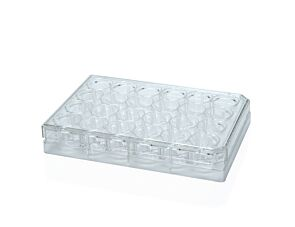 Falcon® 24-Well Flat-Bottom Plate, Tissue Culture-Treated