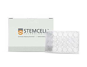 Costar® 6.5 mm Transwell®, 0.4 µm Pore Polyester Membrane Inserts