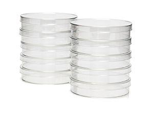 100 mm Dish, TC-Treated