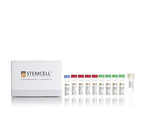 ArciTect™ High-Fidelity DNA Polymerase Kit