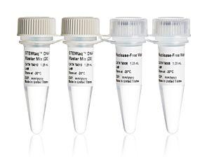 STEMtaq™ DNA Polymerase Master Mix Kit 79009
