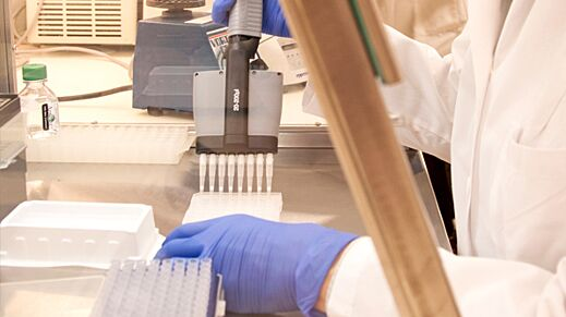 TeSR™-E8™ and STEMdiff™: New Products to Advance Research on Human Pluripotent Stem Cells