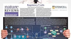 Regulatory T Cells