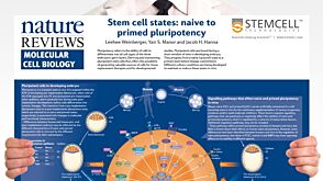 Stem Cell States: Naive to Primed Pluripotency
