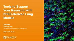 hPSC-Derived Lung Models as Tools for Respiratory Research