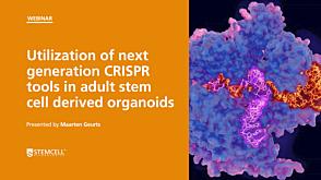 Utilization of Next Generation CRISPR Tools in Adult Stem Cell Derived Organoids
