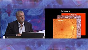 Retinal Cell Therapy Using Human Embryonic Stem Cells