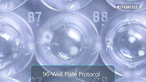 Customizable 96-Well Plate Semi-Solid Cloning Procedure for Mammalian Cells