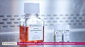 Mouse Intestinal Organoid Culture with IntestiCult™ Organoid Growth Medium