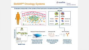 Evaluating the Immuno-Oncology Potential of Compounds Using Human In Vitro TME Models