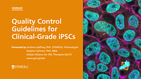 Quality Control Guidelines for Clinical-Grade Human Induced Pluripotent Stem Cell Lines
