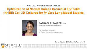 Optimization of Normal Human Bronchial Epithelial Cell 3D Cultures for In Vitro Lung Model Studies