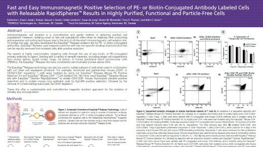 Positive Selection of PE- or Biotin-Conjugated Antibody Labeled Cells with Releasable Rapidspheres™
