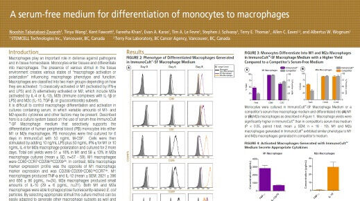A Serum-Free Medium for Differentiation of Monocytes to Macrophages