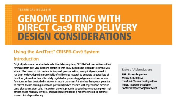 Genome Editing with Direct Cas9 RNP Delivery Design Considerations