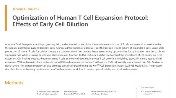Optimization of Human T Cell Expansion Protocol: Effects of Early Cell Dilution