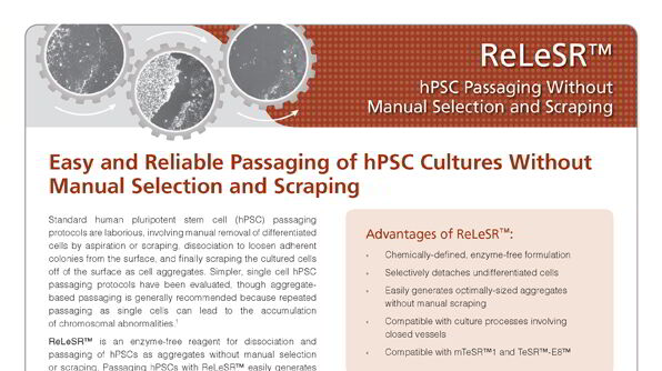 ReLeSR™: hPSC Passaging Without Manual Selection and Scraping