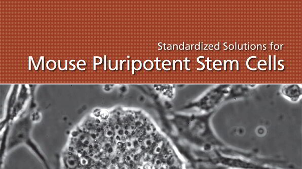 Standardized Solutions for Mouse Pluripotent Stem Cells