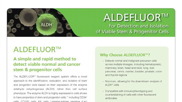 ALDEFLUOR™: For Identification and Isolation of Viable Stem & Progenitor Cells