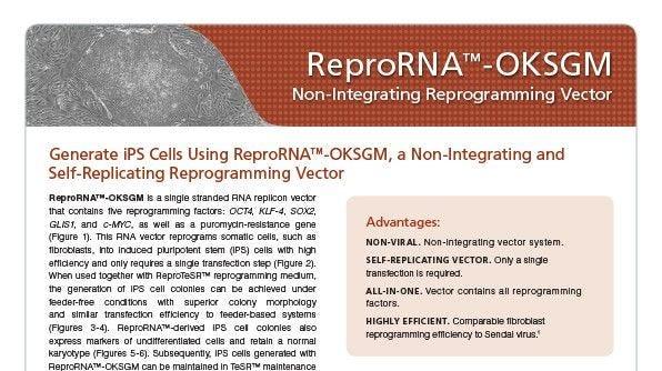 ReproRNA™-OKSGM Non-Integrating Reprogramming Vector